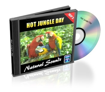 Natural Sounds, Volume 10: Hot Jungle Day