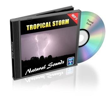 Natural Sounds, Volume 4: Tropical Storm