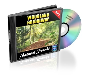 Natural Sounds, Volume 3: Woodland Bridalway